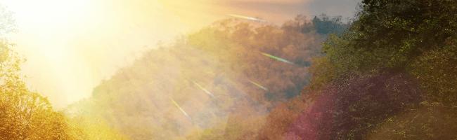 山の中に朝日が降り注いでるところ