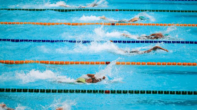 自由形の競泳中のワンシーン