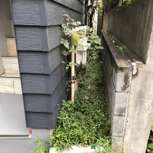 雑草の駆除を行う前の戸建て周辺
