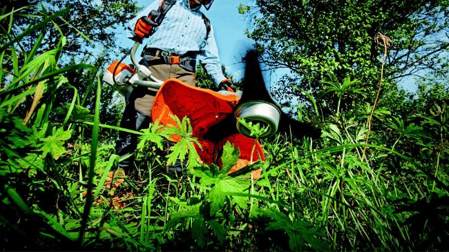 植木屋さんが効率的に草刈りをしているところ