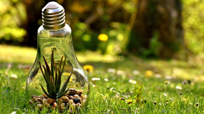 環境のことを考えさせられる電球