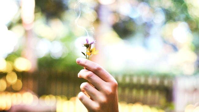 自分の匂いを知るためには邪魔になる香水