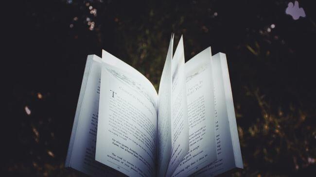 タダで読めた本を開いたところ