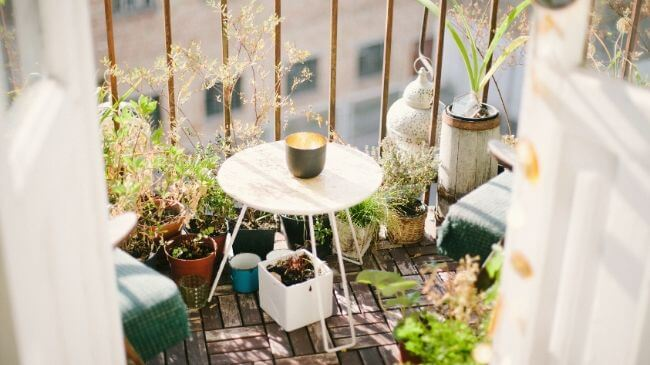 狭いベランダに置かれたテーブルと植物