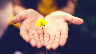 花を贈るだけでも立派な親孝行のプレゼント